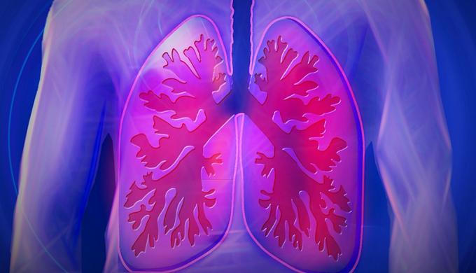 【每幾日一字】肺